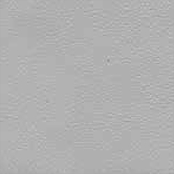 Skyvenetian leather - texture - DOVE - RL-DOV - Dometic - Acastimar