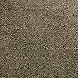 Skyvenetian leather - texture - LIZARD GOLD - DL-LGO - Dometic - Acastimar